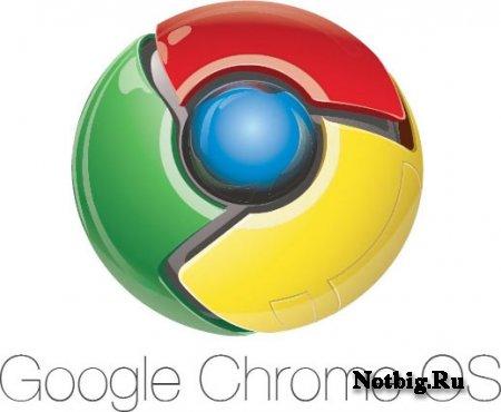 Google Chrome OS выйдет в этом году.